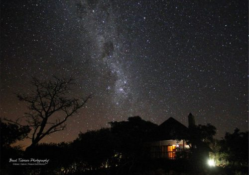 Matingwe gallery - Matingwe Lodge Star Shot(1)