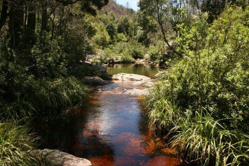 Tsitsikamma Lodge & Spa - River