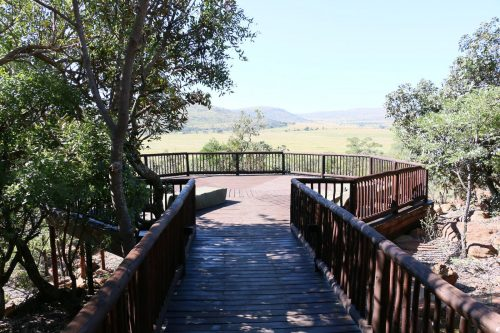 matingwe-lodge - deck-02
