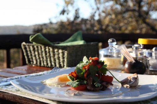 matingwe-lodge - food-08