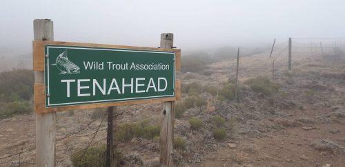 tenahead-sign